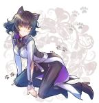 1girl animal_ears belt black_hair black_pants blake_belladonna breasts cat_ears coattails high_heels highres iesupa jacket kneeling pants paw_print rwby solo yellow_eyes zipper
